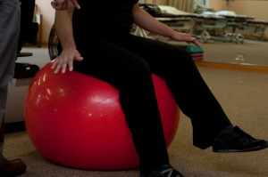 Physical Therapy Stability Ball